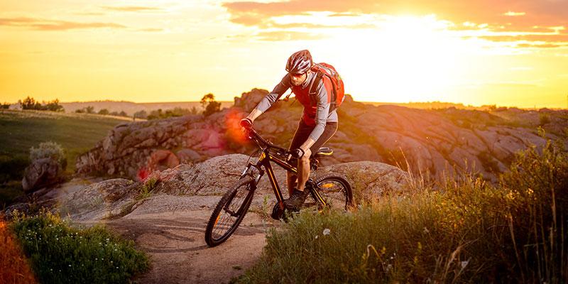 Den mångsidiga mountainbiken
